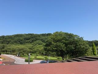 中央大学 多摩キャンパス 自然